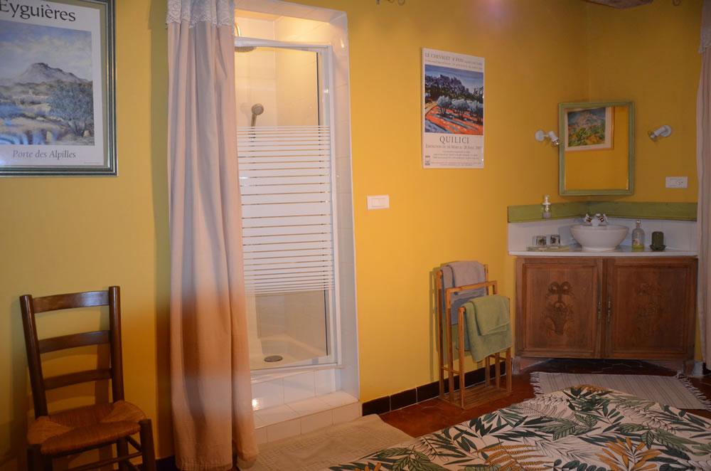 chambre-hotes-alpilles-mallemort-douche (2)